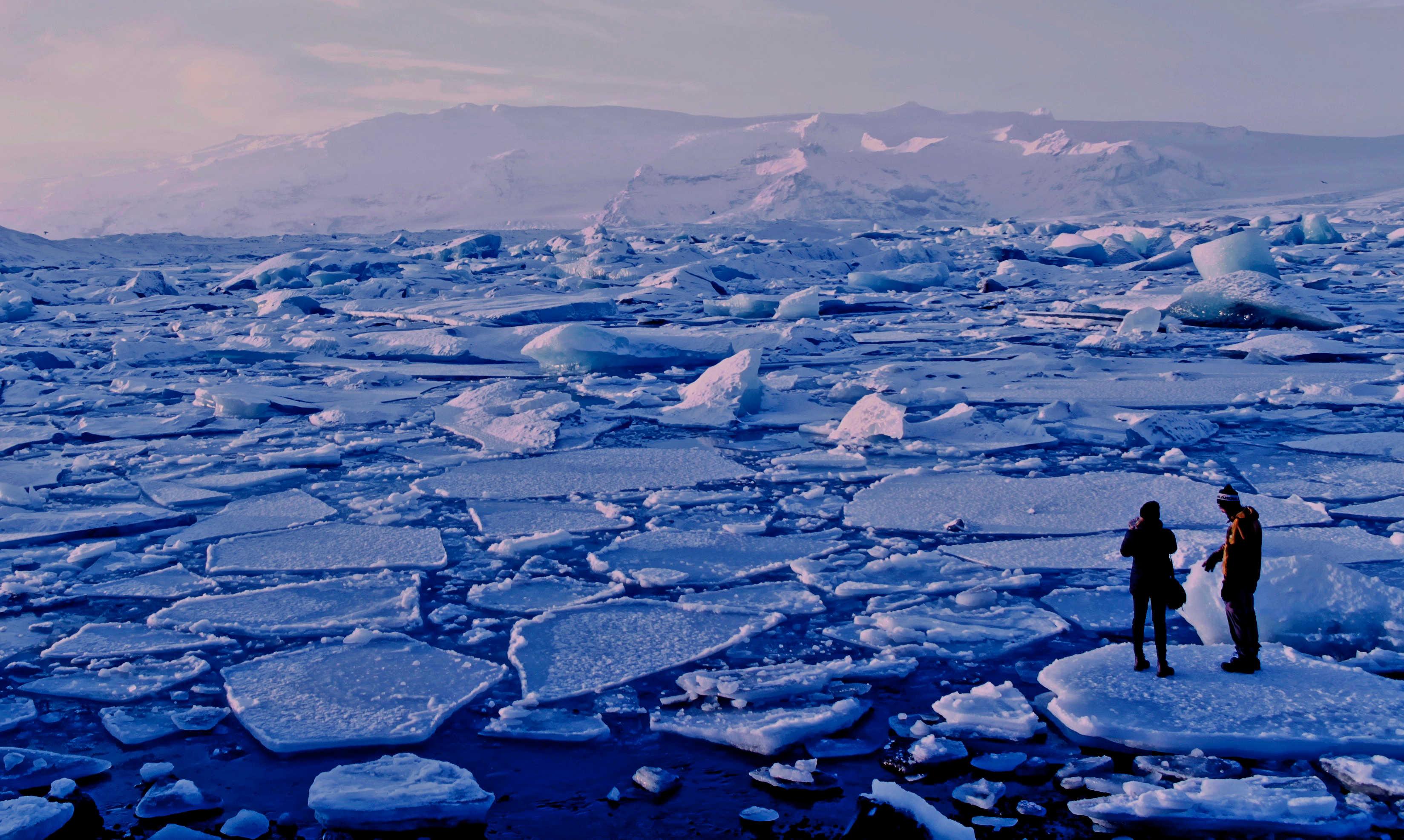 Bruce Packard » ice field